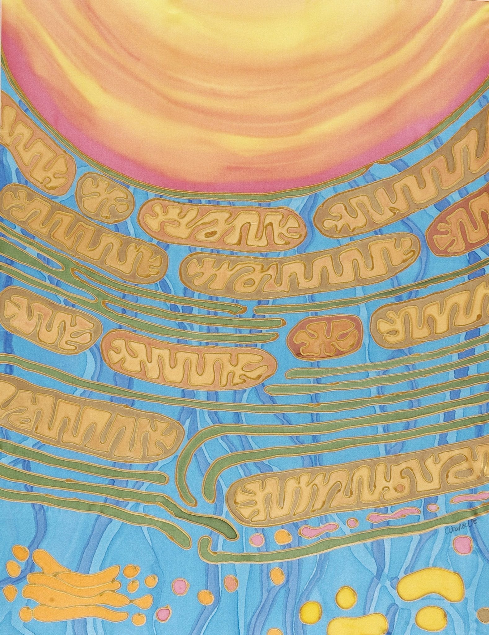 Mitonuclear Dawn by Odra noel