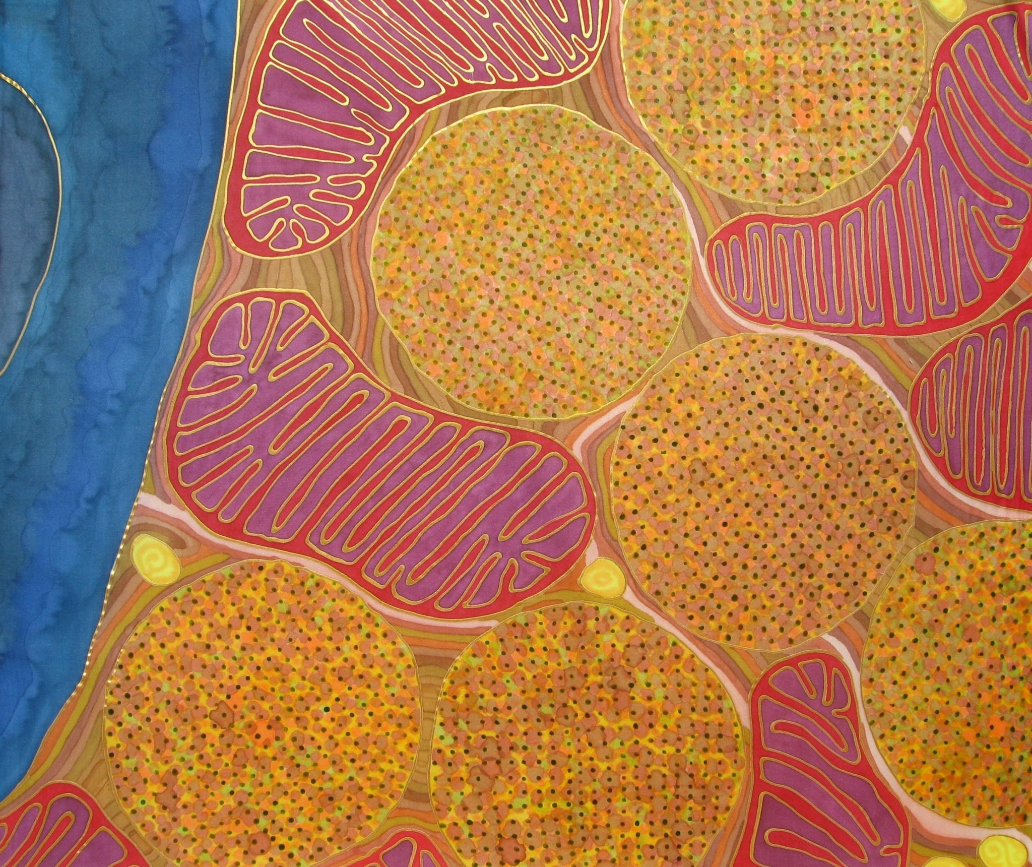 Flight Muscle Mitochondria by Odra Noel