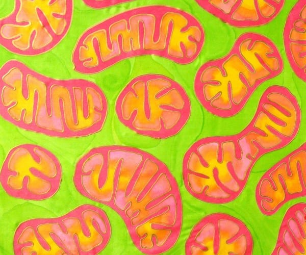 Mitochondria in Action by Odra Noel