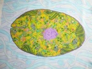 Euglena, famous pond water dweller